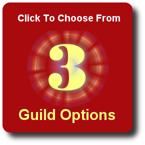 Assisted Living Marketing Guild Options